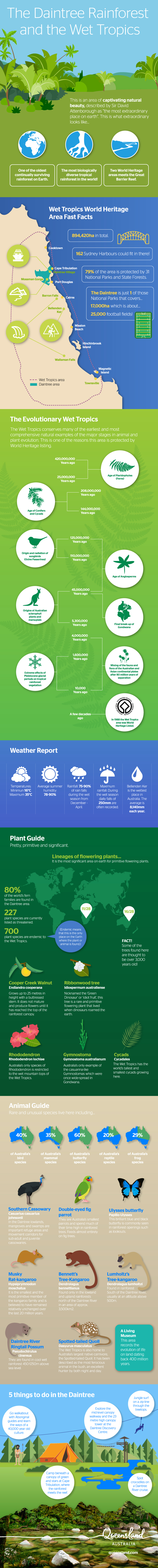Daintree Wet Tropics Infographic